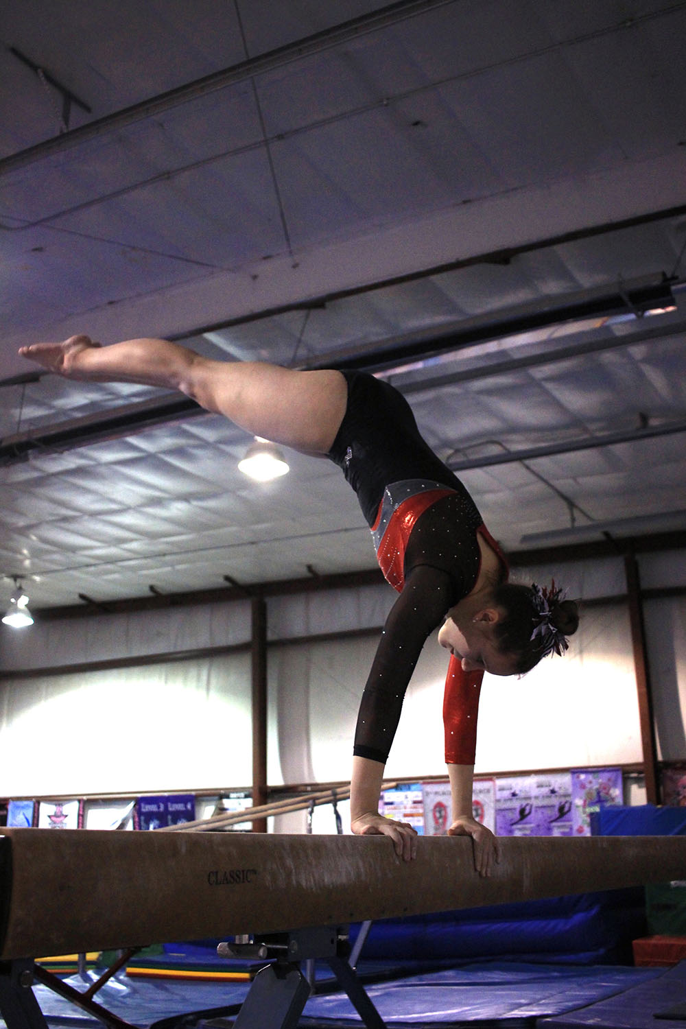 High Fliers Gymnasts Find Success In State Competition Tiger Hi Line Online